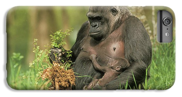 Western Gorilla And Young IPhone 6 Plus Case by M. Watson