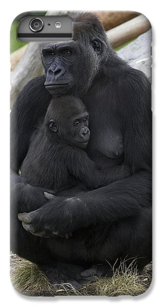 Western Lowland Gorilla Mother And Baby IPhone 6 Plus Case by San Diego Zoo