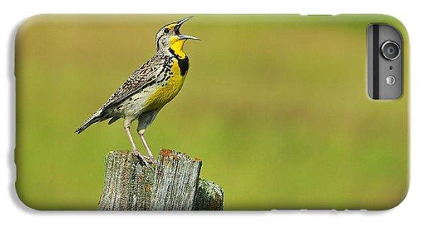 Western Meadowlark IPhone 6 Plus Case by Tony Beck