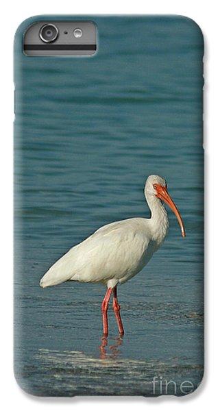 White Ibis IPhone 6 Plus Case by Cindi Ressler