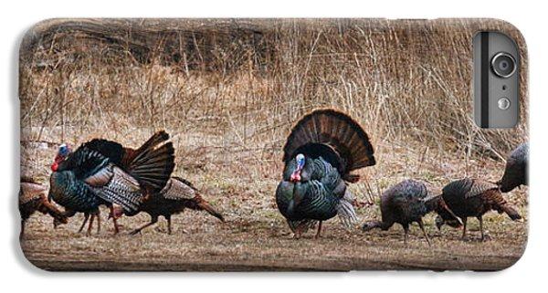 Wild Turkeys IPhone 6 Plus Case by Lori Deiter