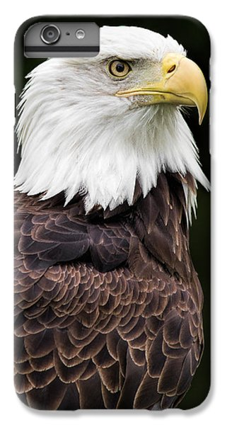 With Dignity IPhone 6 Plus Case by Dale Kincaid