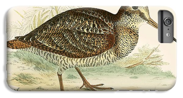 Woodcock IPhone 6 Plus Case by Beverley R Morris
