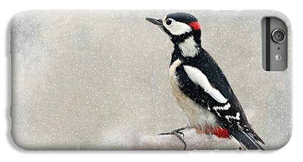 Woodpecker IPhone 6 Plus Case by Heike Hultsch