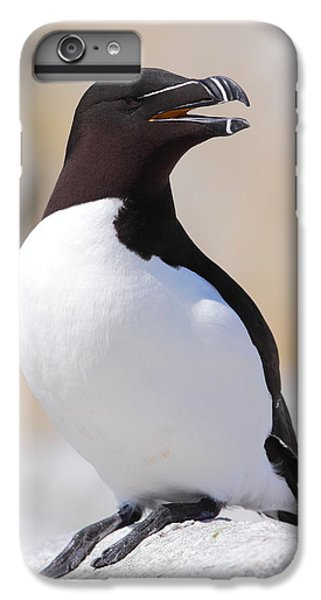 Razorbill IPhone 6 Plus Case by Bruce J Robinson