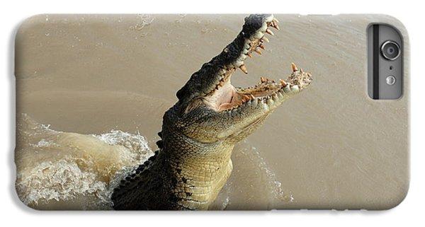 Salt Water Crocodile 2 IPhone 6 Plus Case by Bob Christopher
