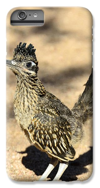 A Baby Roadrunner  IPhone 6 Plus Case by Saija  Lehtonen