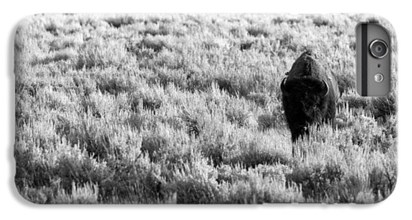 American Bison In Black And White IPhone 6 Plus Case by Sebastian Musial