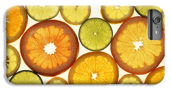 Citrus Slices IPhone 6 Plus Case by Photo Researchers