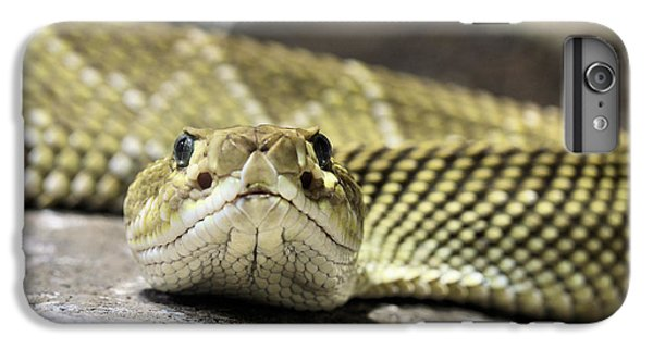 Crotalus Basiliscus IPhone 6 Plus Case by JC Findley
