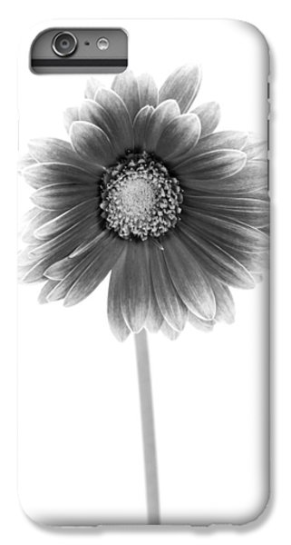Gerbera In Black And White IPhone 6 Plus Case by Sebastian Musial