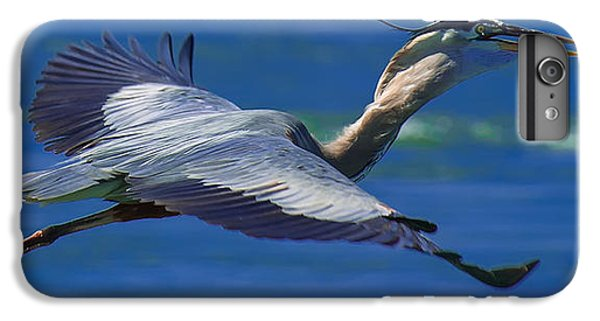 Gliding Great Blue Heron IPhone 6 Plus Case by Sebastian Musial