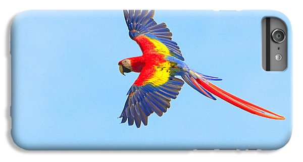 Into The Blue IPhone 6 Plus Case by Tony Beck