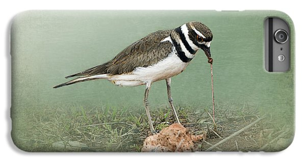 Killdeer And Worm IPhone 6 Plus Case by Betty LaRue