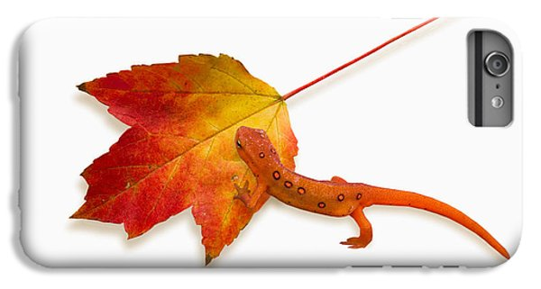 Red Spotted Newt IPhone 6 Plus Case by Ron Jones