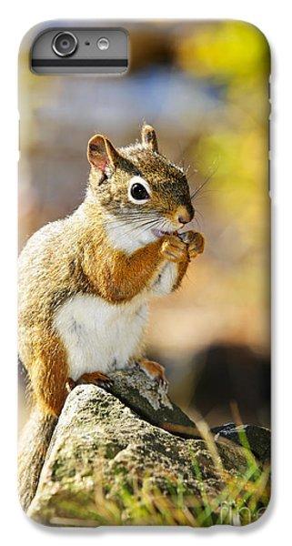 Red Squirrel IPhone 6 Plus Case by Elena Elisseeva