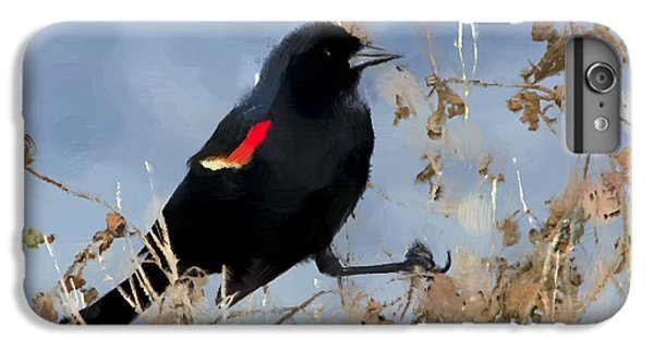 Redwing Blackbird IPhone 6 Plus Case by Betty LaRue