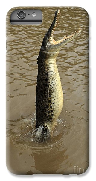 Salt Water Crocodile IPhone 6 Plus Case by Bob Christopher