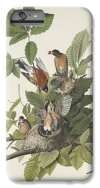 American Robin IPhone 6 Plus Case by John James Audubon