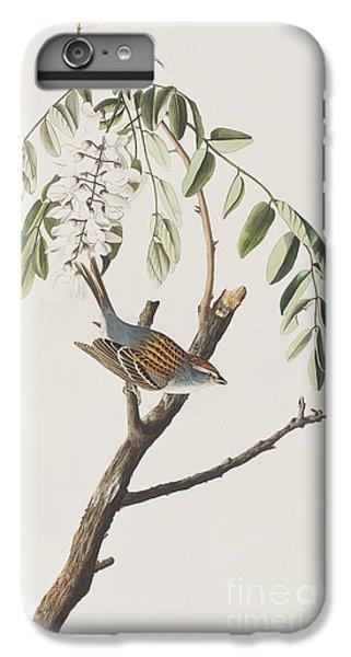 Chipping Sparrow IPhone 6 Plus Case by John James Audubon