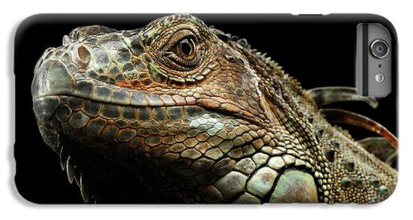 Closeup Green Iguana Isolated On Black Background IPhone 6 Plus Case by Sergey Taran