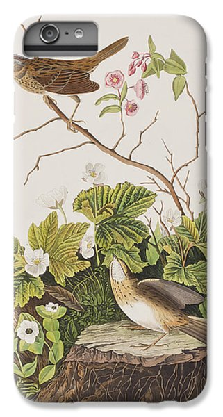 Lincoln Finch IPhone 6 Plus Case by John James Audubon
