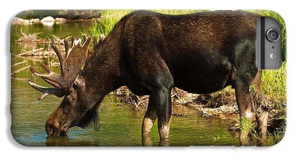 Moose IPhone 6 Plus Case by Sebastian Musial