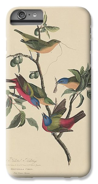 Painted Bunting IPhone 6 Plus Case by John James Audubon