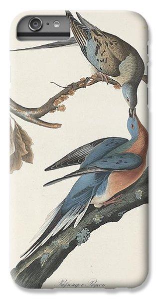 Passenger Pigeon IPhone 6 Plus Case by John James Audubon