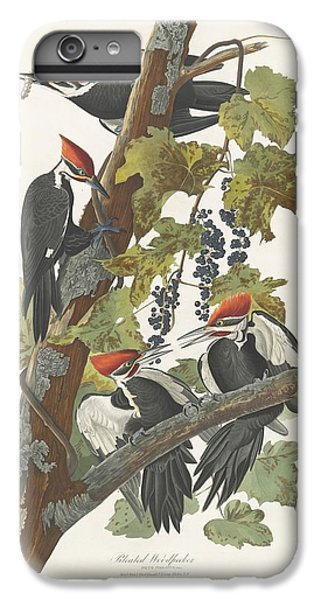 Pileated Woodpecker IPhone 6 Plus Case by John James Audubon