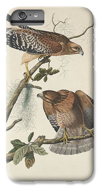 Red Shouldered Hawk IPhone 6 Plus Case by John James Audubon