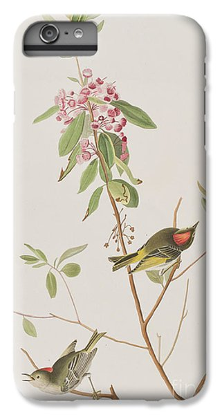 Ruby Crowned Wren IPhone 6 Plus Case by John James Audubon