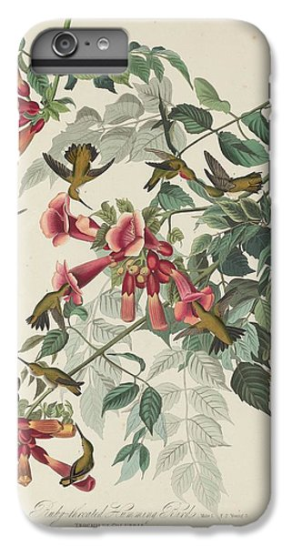 Ruby-throated Hummingbird IPhone 6 Plus Case by John James Audubon