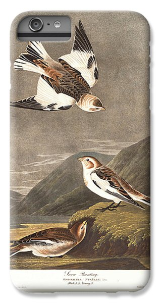 Snow Bunting IPhone 6 Plus Case by John James Audubon