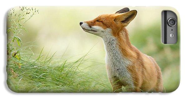 Zen Fox Series - Zen Fox IPhone 6 Plus Case by Roeselien Raimond