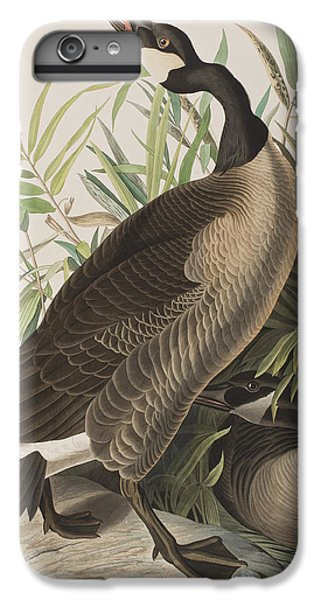 Canada Goose IPhone 6 Plus Case by John James Audubon