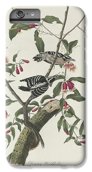 Downy Woodpecker IPhone 6 Plus Case by John James Audubon