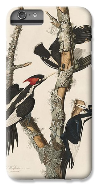 Ivory-billed Woodpecker IPhone 6 Plus Case by John James Audubon