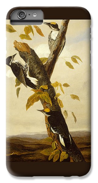 Woodpeckers IPhone 6 Plus Case by John James Audubon