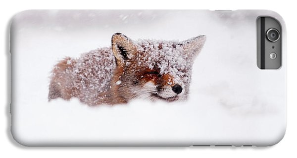 50 Shades Of White And A Touch Of Red IPhone 6 Plus Case by Roeselien Raimond