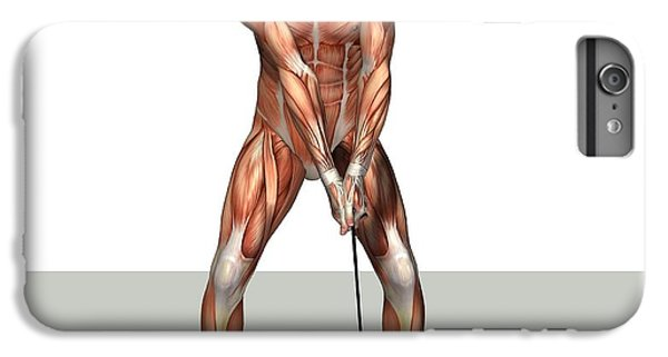 Male Muscles, Artwork IPhone 6 Plus Case by Friedrich Saurer