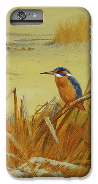 A Kingfisher Amongst Reeds In Winter IPhone 6 Plus Case by Archibald Thorburn