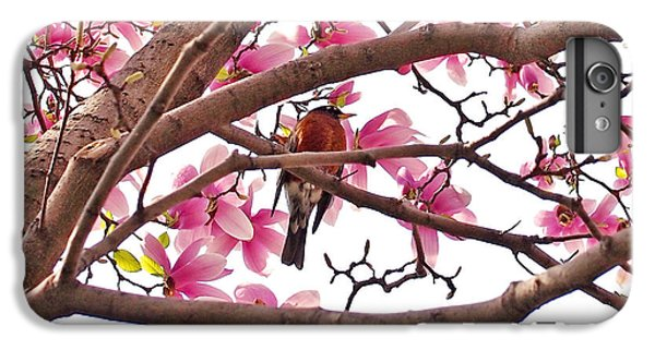 A Songbird In The Magnolia Tree - Square IPhone 6 Plus Case by Rona Black