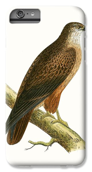 African Buzzard IPhone 6 Plus Case by English School