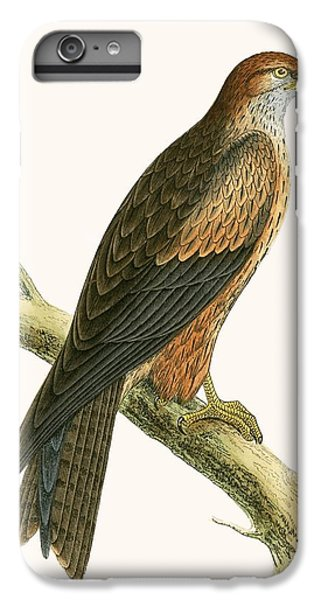 Arabian Kite IPhone 6 Plus Case by English School