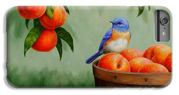 Bluebird And Peaches Greeting Card 3 IPhone 6 Plus Case by Crista Forest