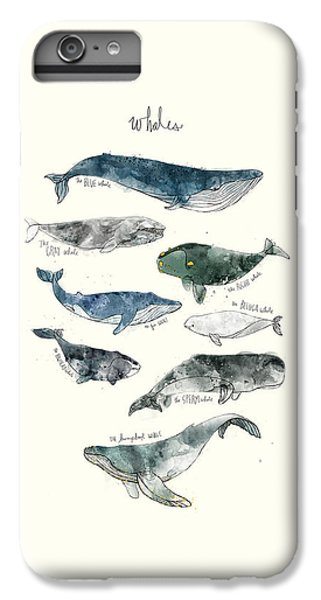 Whales IPhone 6 Plus Case by Amy Hamilton