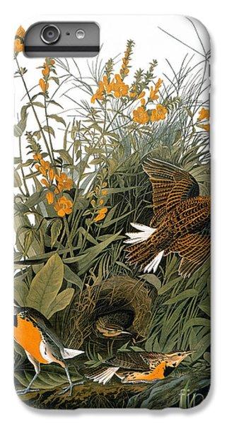 Audubon: Meadowlark IPhone 6 Plus Case by Granger