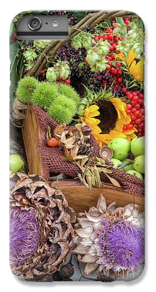 Autumn Abundance IPhone 6 Plus Case by Tim Gainey