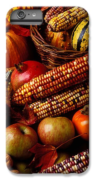 Autumn Harvest  IPhone 6 Plus Case by Garry Gay